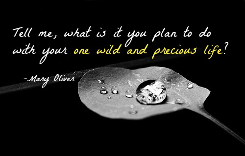 Tell me, what is it you plan to do with your one wild and precious life? Mary Oliver