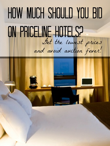 How Much Should You Bid on Priceline?