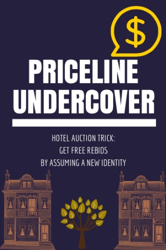 Undercover Priceline Bidding Strategy for Cheap Hotels