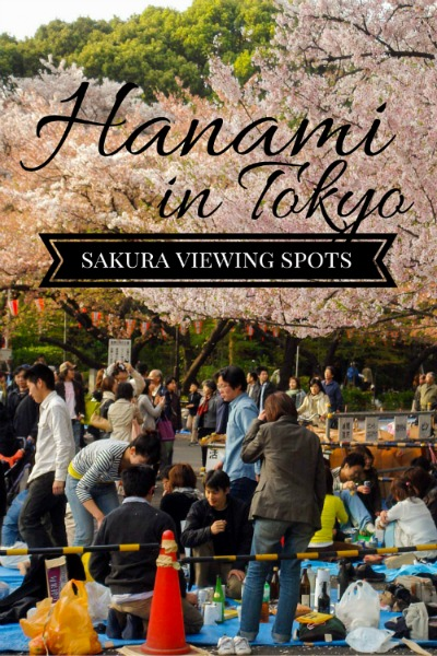 The best spots for sakura viewing or hanami in Tokyo