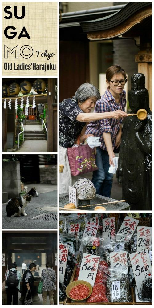 sugamo-tokyo-old-ladies-harajuku